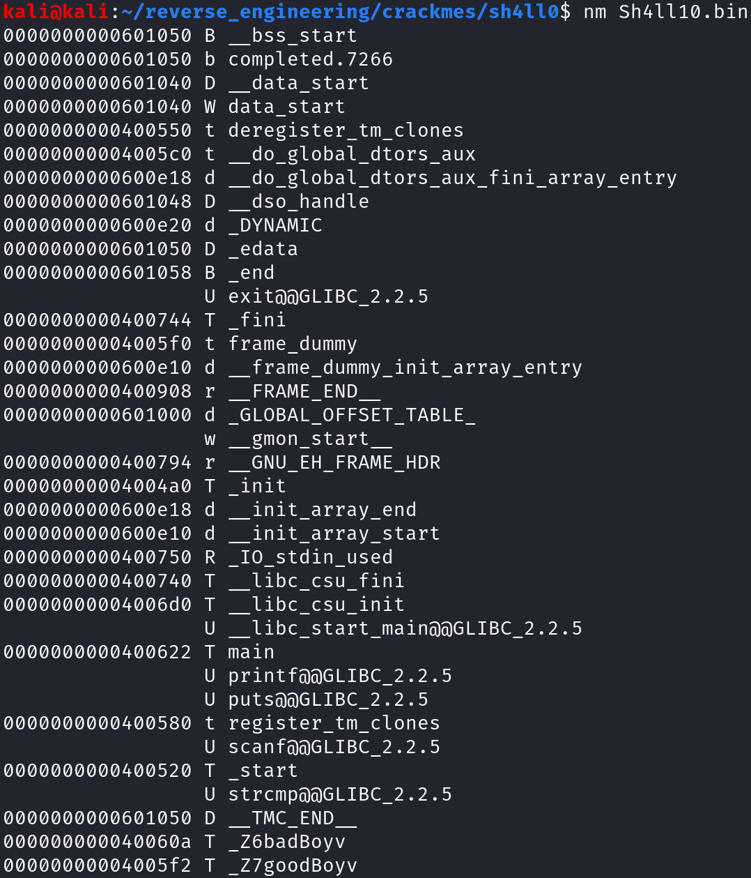 Output of nm command
