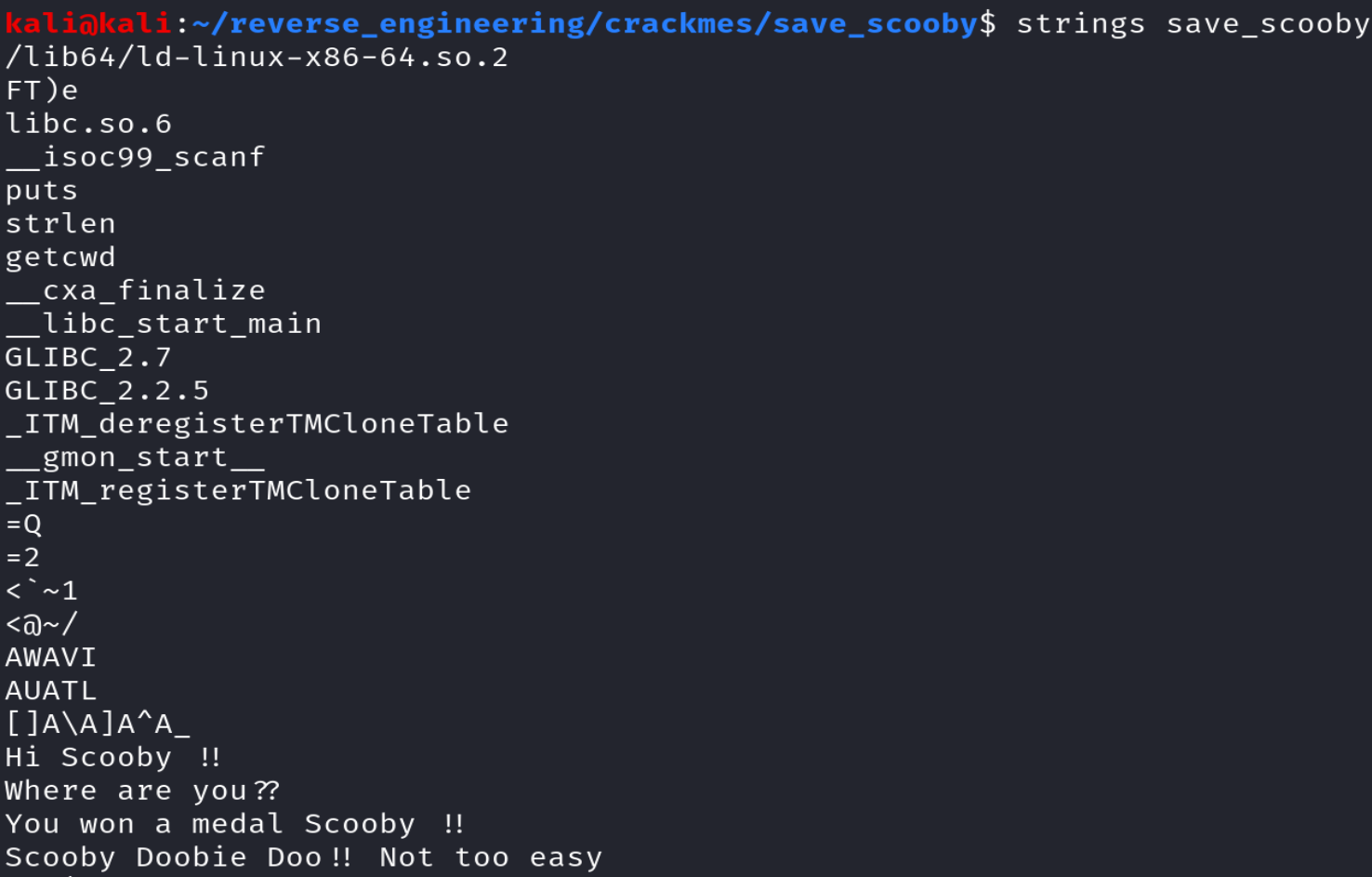 Output of running strings on the save_scooby binary