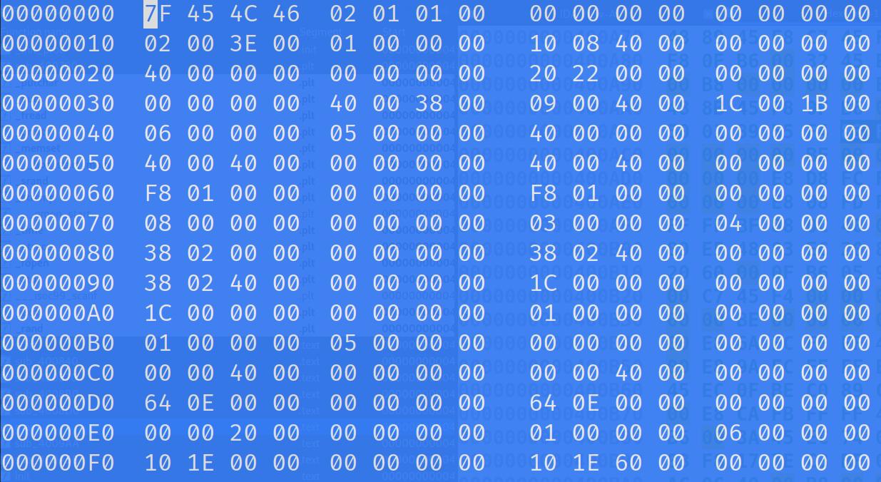 Binary open in hexeditor. The addresses do not match IDA