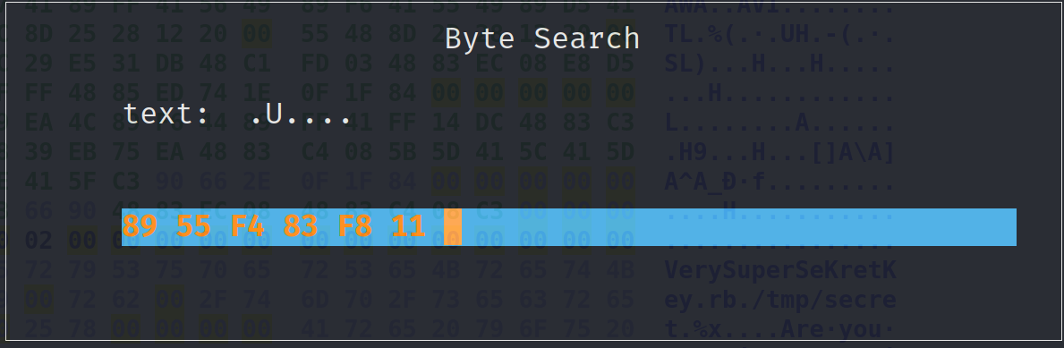 Search for compare bytes
