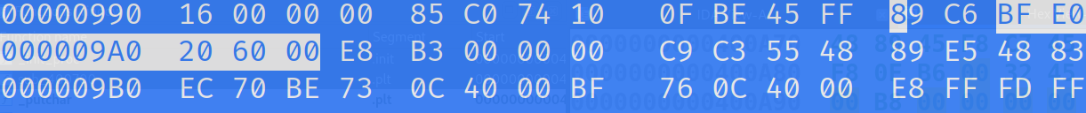 Found the bytes we want to modify