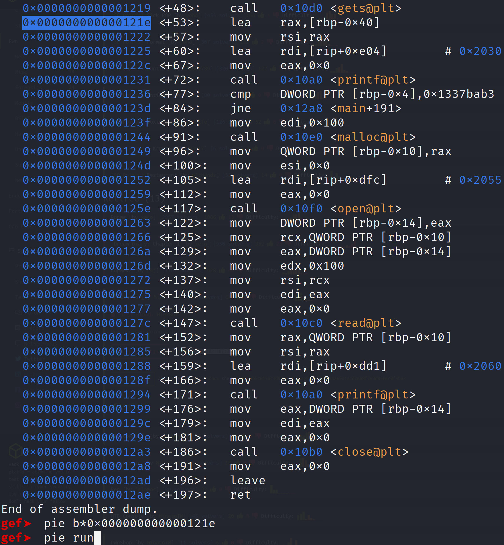Setting a pie breakpoint and running the binary