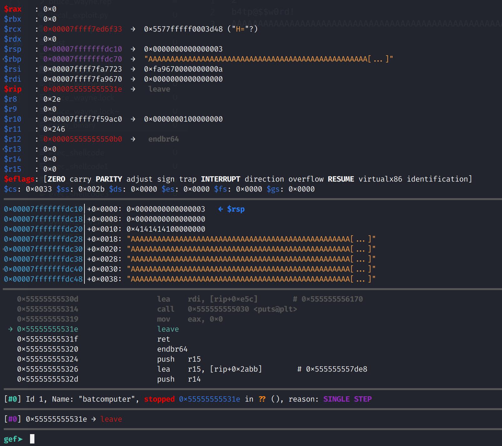 Crashing the binary in gdb